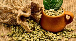قهوه سبز لاغری